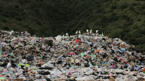 lixo napoles