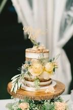 Elizabeth Fogarty Photography -wedding display naked cake 3
