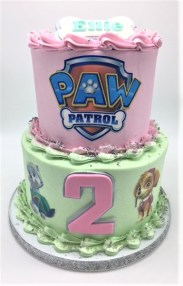 two tier paw patrol cake