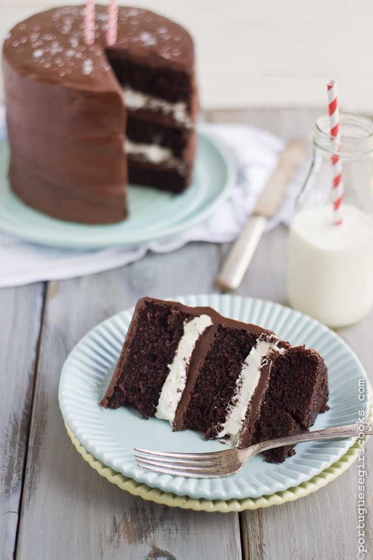 The cake base is my absolute go to chocolate cake, it's absolutely perfect. I have been making it for years without a single fail. It's a one bowl chocolate cake which makes it a snap to make. #chocolatecake #cakerecipe #chocoholic