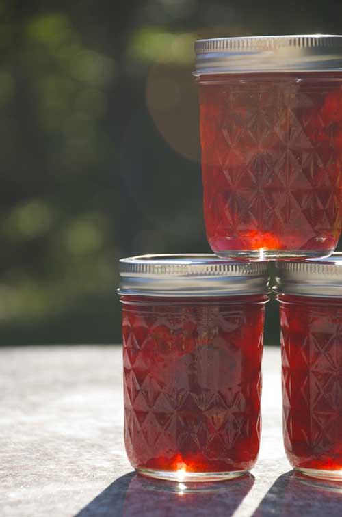 Strawberry-Port Wine Preserves