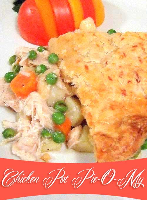 Chunks of tender chicken, lots of vegetables and a tasty crust. It has everything good, a perfect comfort food kind of meal for me!