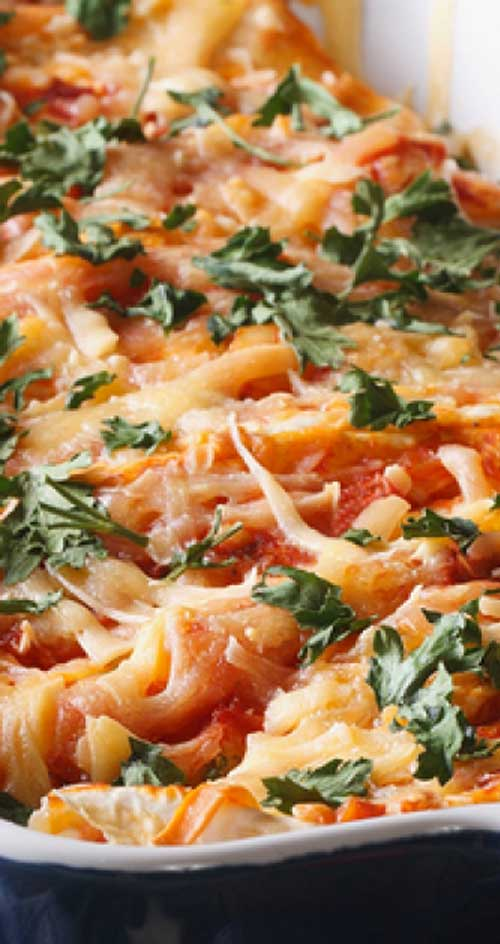 This cheesy chicken enchilada recipe is packed with flavor. A fun dish any night of the week.