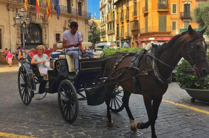 Historic center Palma Mallorca