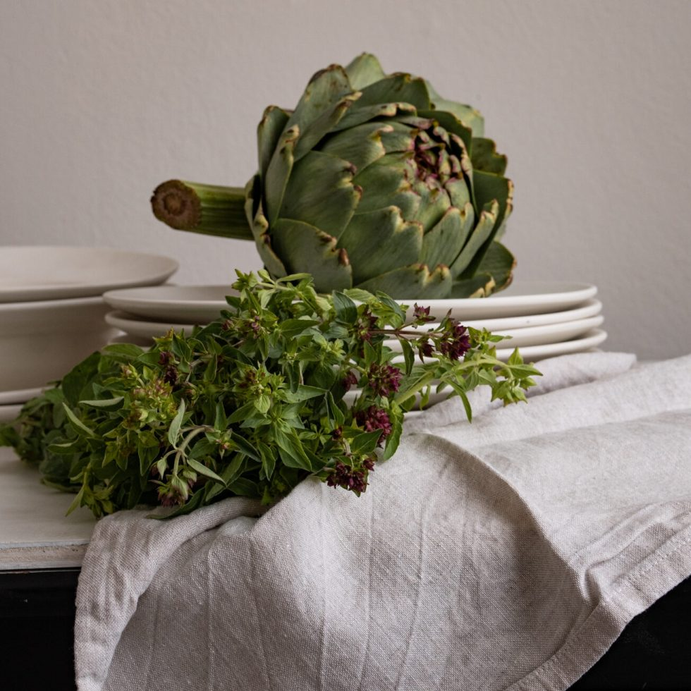 Terri Salminen -light study with globe artichokes