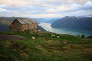 Fiordi Norvegesi: quali sono i più belli da vedere e i tour migliori!