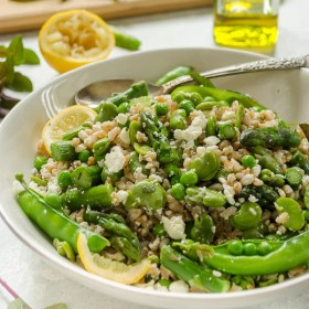 Spring Farro Salad with Feta, Lemon and Mint is a hearty vegetarian salad packed with spring produce, feta cheese, and the freshness of lemon and mint.