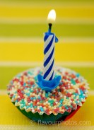 LR Cute Cupcake