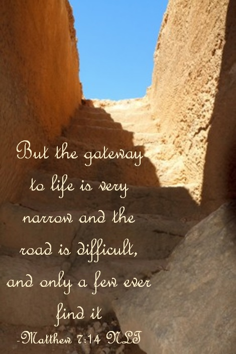 Salvation: The Narrow Road That Leads To Heaven