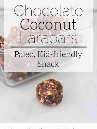 chocolate coconut larabars