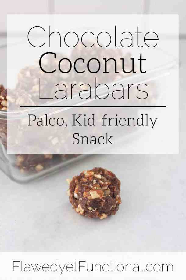 chocolate coconut larabars