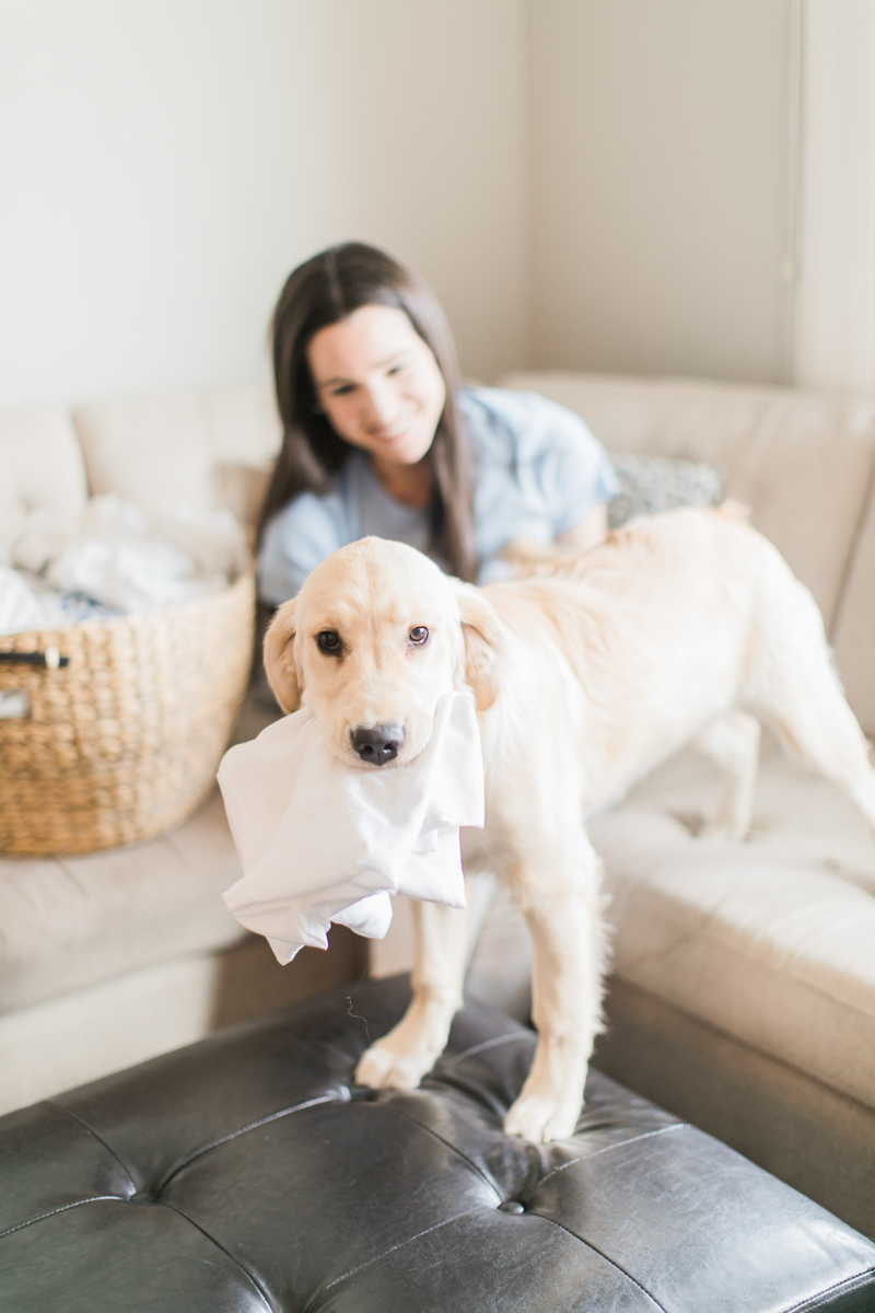 How to keep your clothes smelling fresh (even with pets) with Purex Crystals by southern blogger and dog mom Stephanie Ziajka from Diary of a Debutante, dog owner laundry hacks, pet odor removal, remove pet odor in laundry, pet laundry, laundry with pets, best laundry detergent for pet odor, add to laundry to remove odor, cute golden retriever in laundry, Purex Crystals review