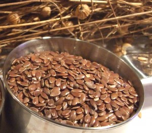 Linseed, traditional bronze linseeds