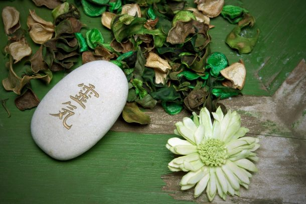 Reiki written in Japanese characters on a stone surrounded by flower petals