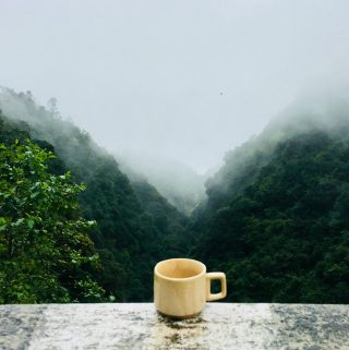 This image features morning mist, green trees, and a coffee cup