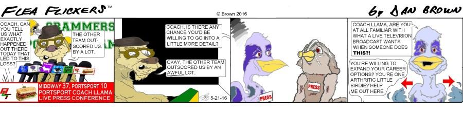 chronological strip 13