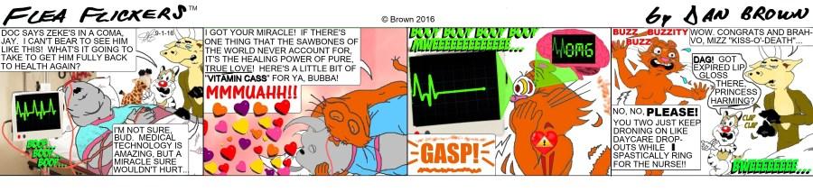 chronological strip 71