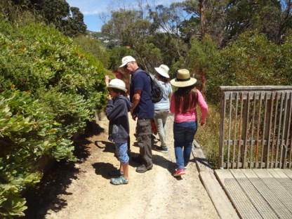Wellington Botanischer Garten