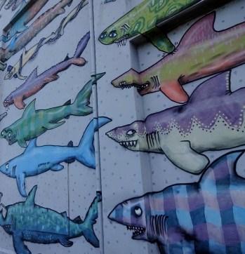Wellington Street Art_Shark