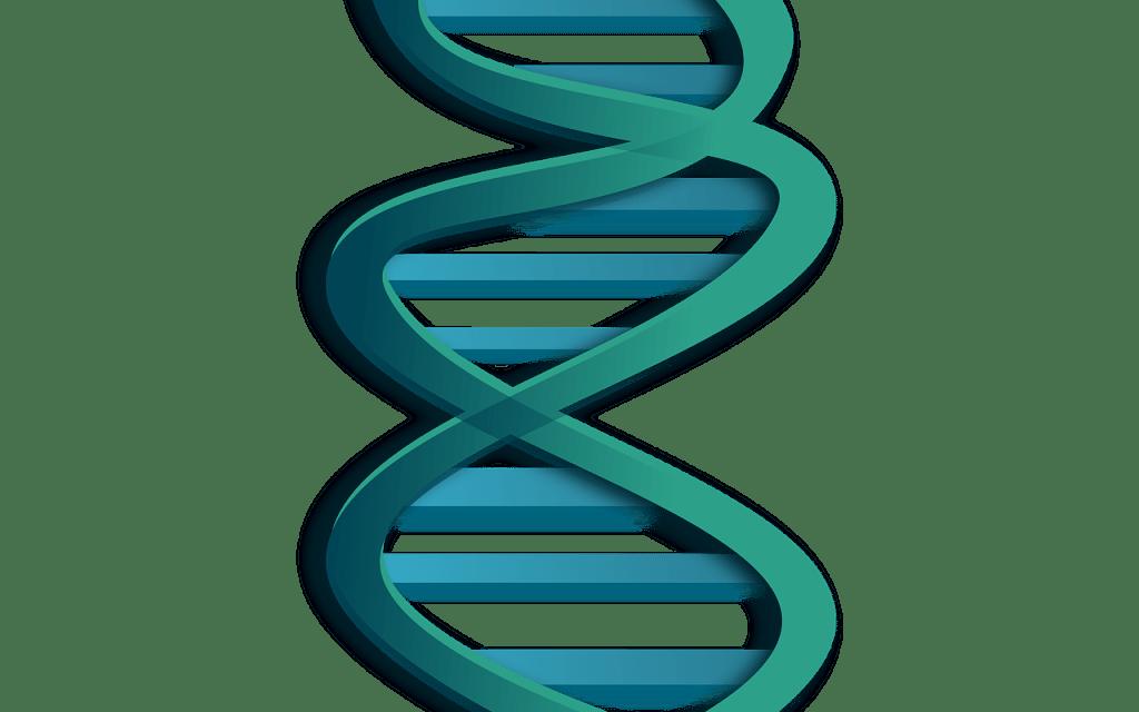 Designer Genes – The Game