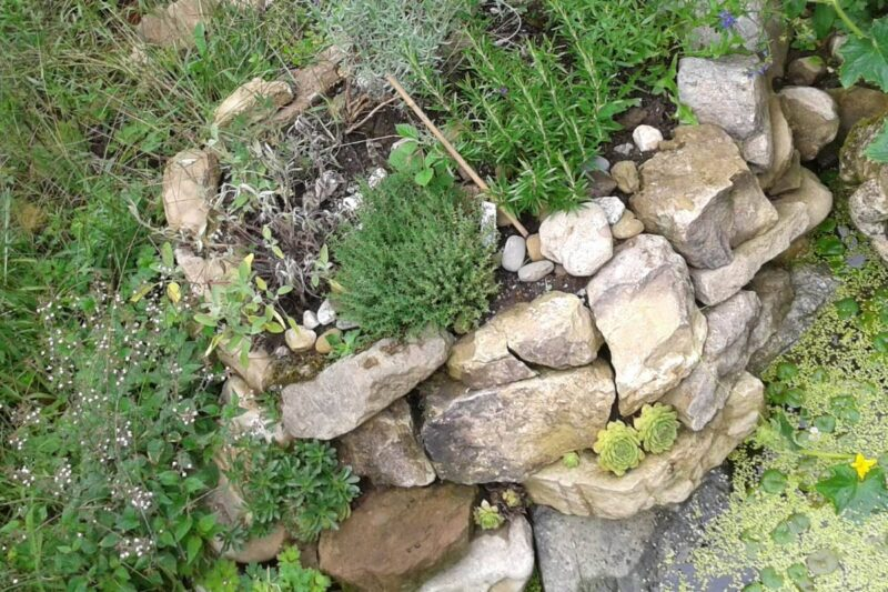 Kräuterspirale - die oberste Zone ist für Pflanzen die es gerne trocken haben.