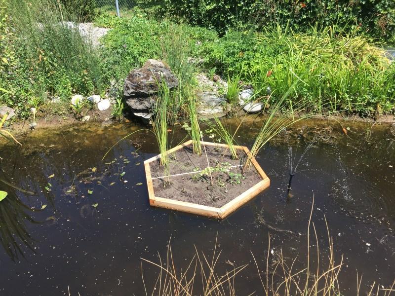Bepflanzte Schwimminsel Hexagon Gross
