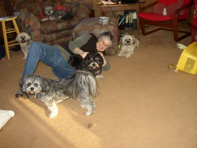 susanandallthedogs