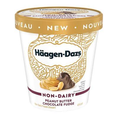 Häagen-Dazs Non-Dairy Peanut Butter Chocolate Fudge