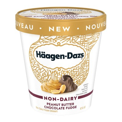 Häagen-Dazs Non-Dairy Peanut Butter Chocolate Fudge