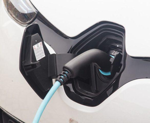 Battery-powered cars observe sales slump