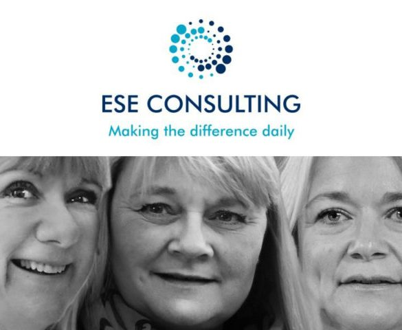 Q&A: Ese Consulting
