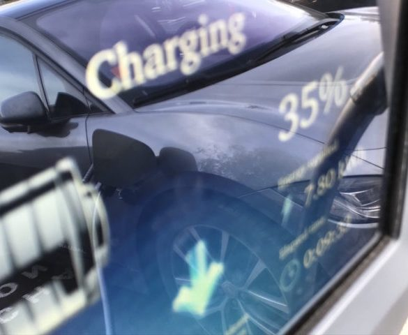 Polar rapid charging network expands 50% in a year