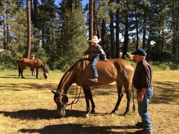 Protected: Cali arrives at the ranch