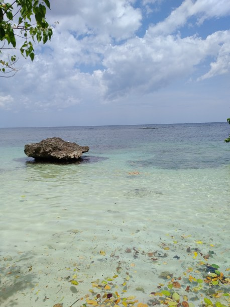 """Standing on Fleming's private beach, looking at his """"island."""""""