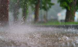 Septic Tank Problems Caused by Rainfall & What To Do