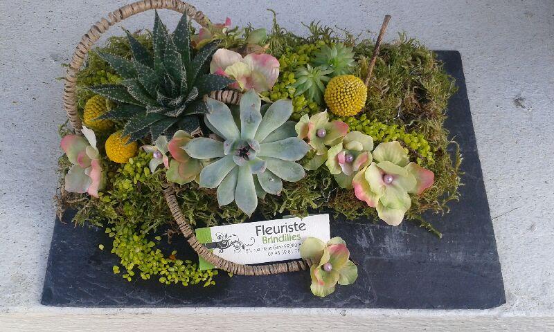 Composition de plantes par Audrey Cedille pour Brindilles à Bannalec-29380