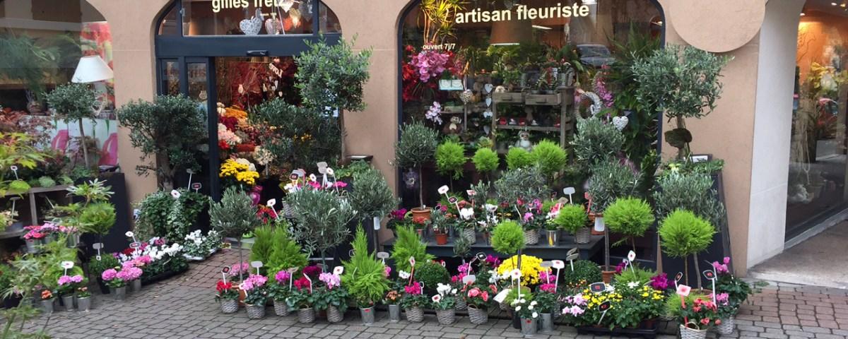 vitrine d'Automne boutique Exotica à Garches-92380