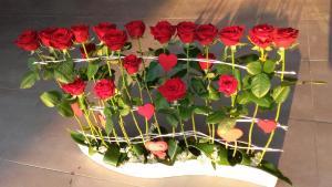 composition par Sophie pour Tutti Fleuri à Perpignan-66000
