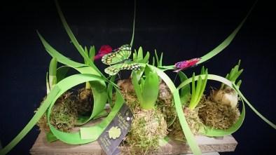 """Composition réalisée en cours d'art floral, avec l'association """"Les Taillades"""""""
