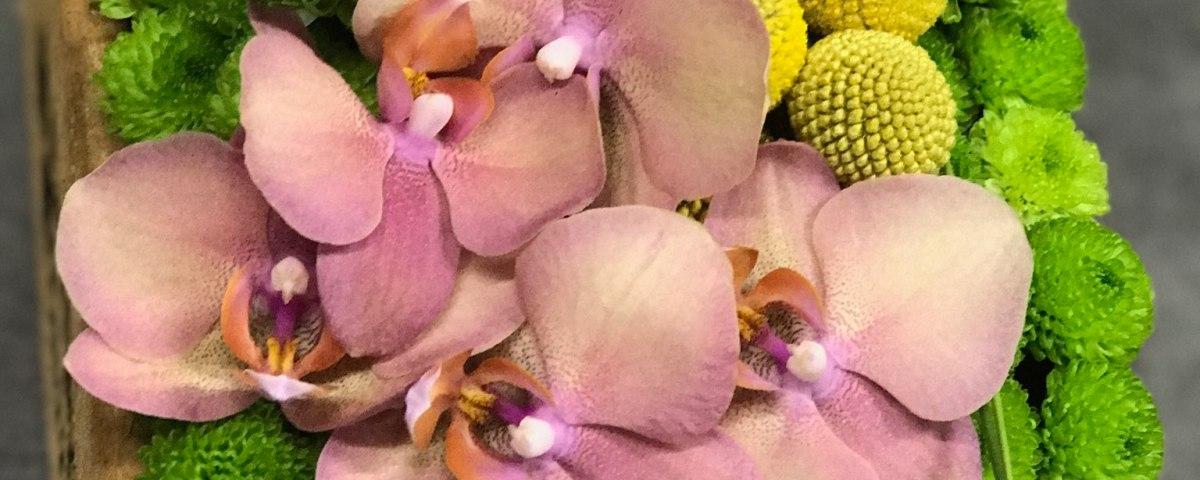 Envoyer des fleurs à Martigues avec votre fleuriste VERT TIGE