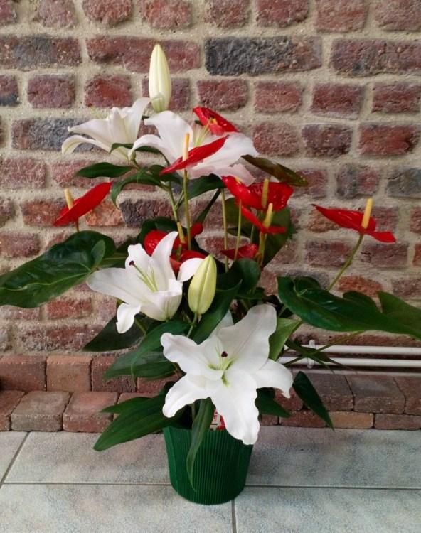 Veronique Fleurs