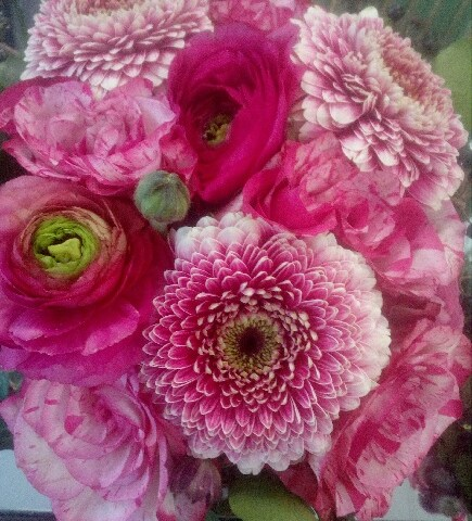 Fleurs Nature Elle