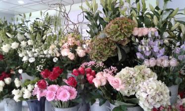 Boutique JB Fleurs Dunkerque - 59140