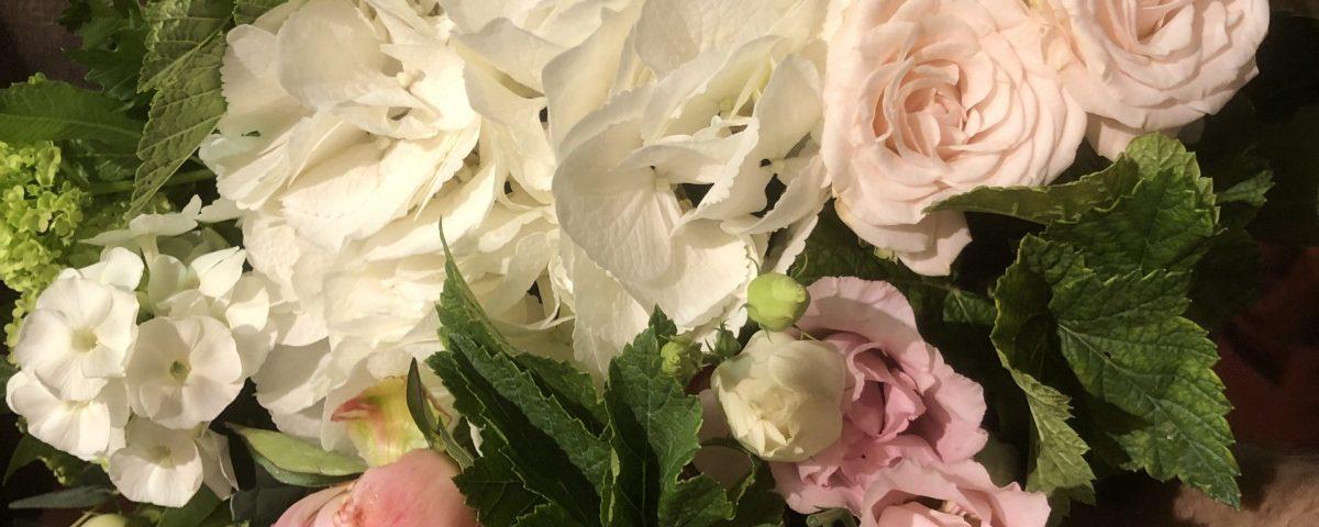 Exotica fleuriste à Garches