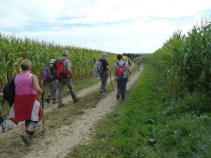 La randonnée du 28 septembre à Saint-Omer