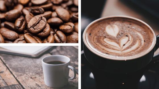 La café : une incroyable petite graine