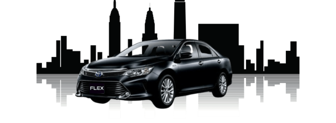 flex limo for new time marketing (4)