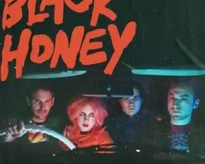 MUSIC AUDIO: Black Honey – Disinfect Mp3 Download