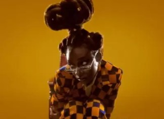 Little Simz Point and Kill Mp3Download