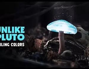Unlike Pluto – Sailing Colors Mp3 Download